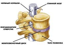 Когда болит поджелудочная спина может болеть